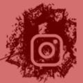 icono-instagram-picofino