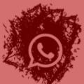 icono-whatsapp-picofino